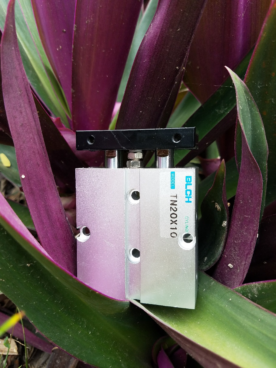Bộ ảnh Pneumatic Cylinder: Back to Nature